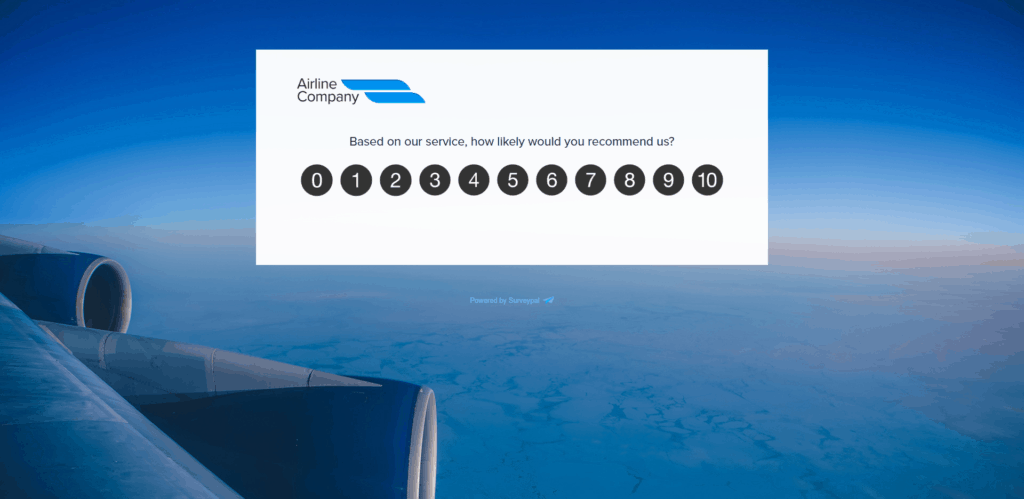 flight experience survey