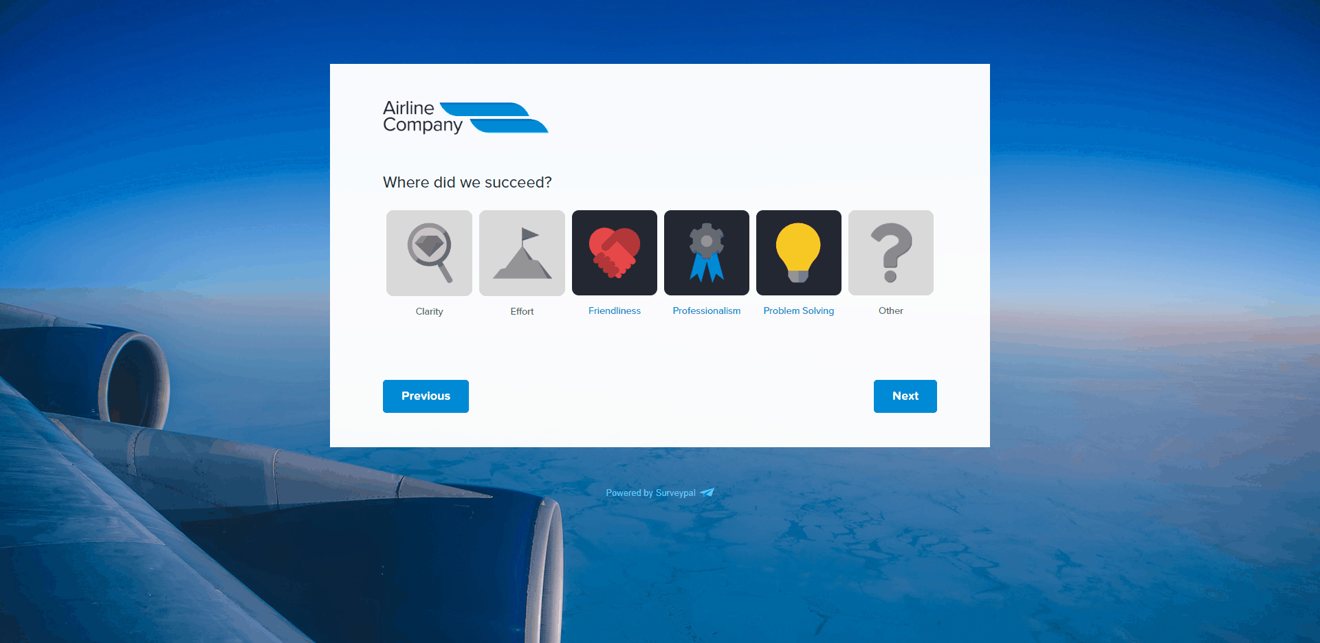 in flight experience survey