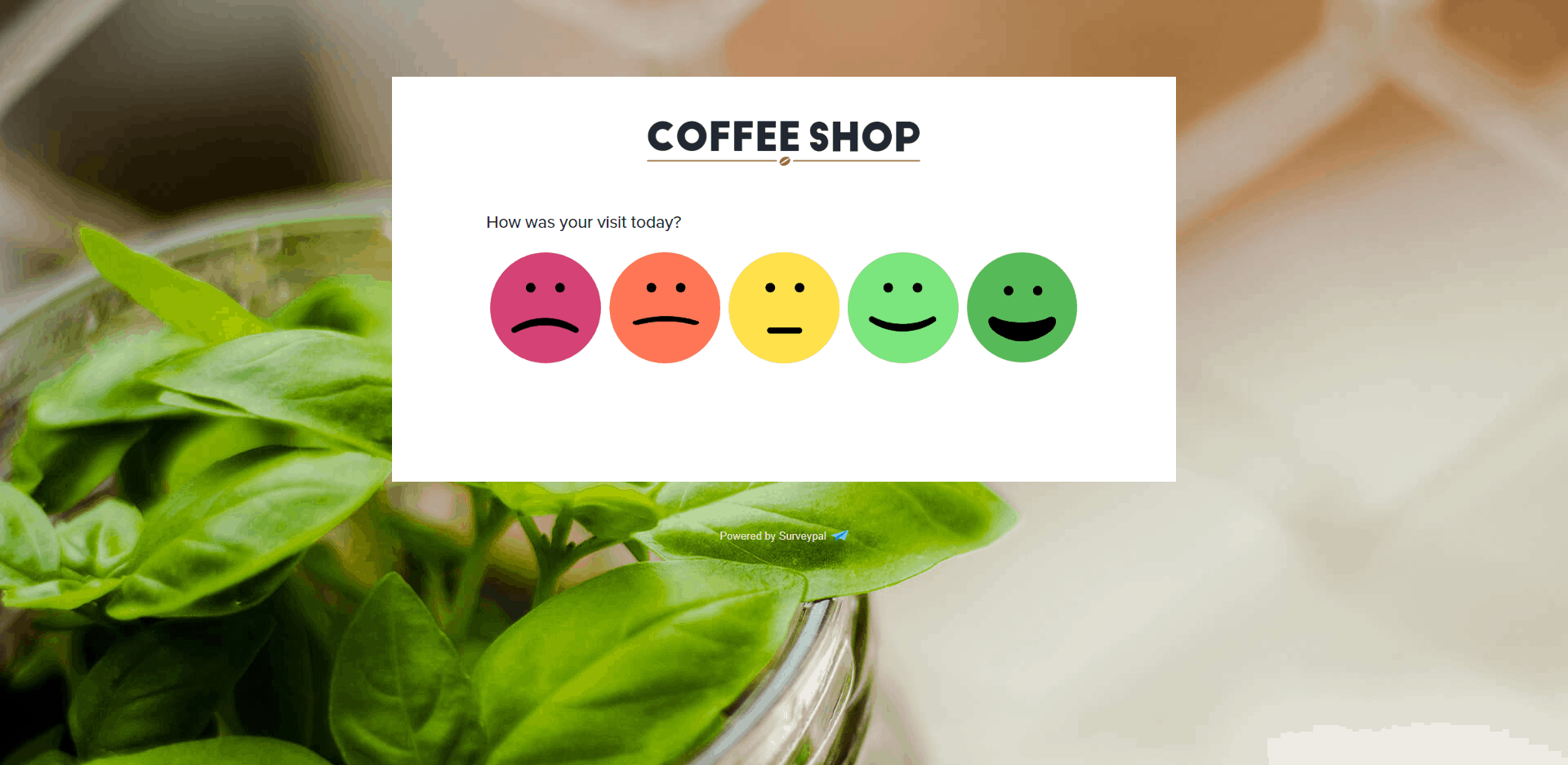 coffee shop experience survey