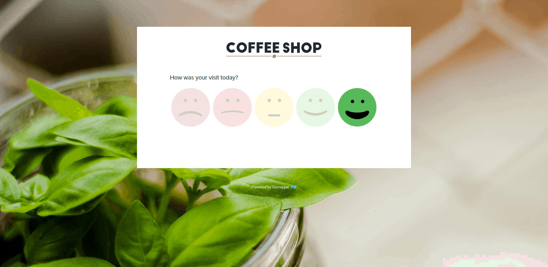 coffee shop customer satisfaction survey