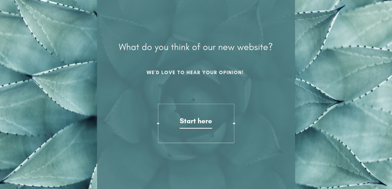 webiste user experience survey introduction