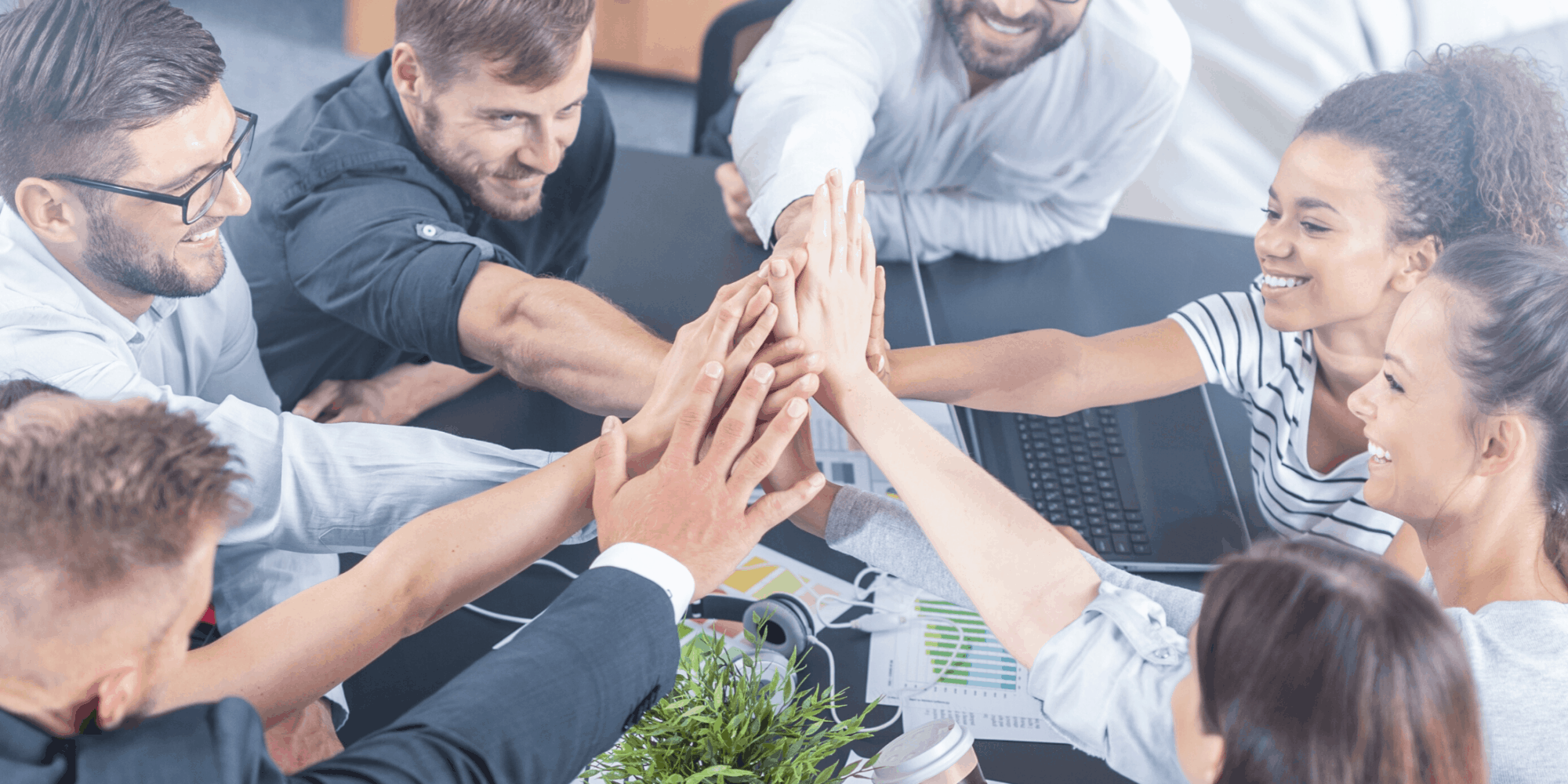 Surveypal customer success